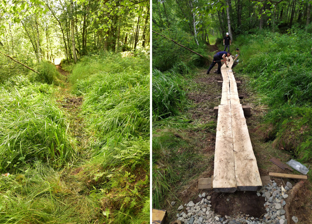 Trail Before and After